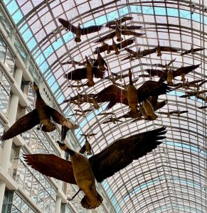 Canadian Moral Rights: Flight Stop, Toronto Eaton Centre